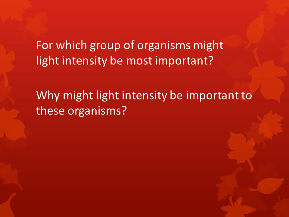 For which group of organisms might