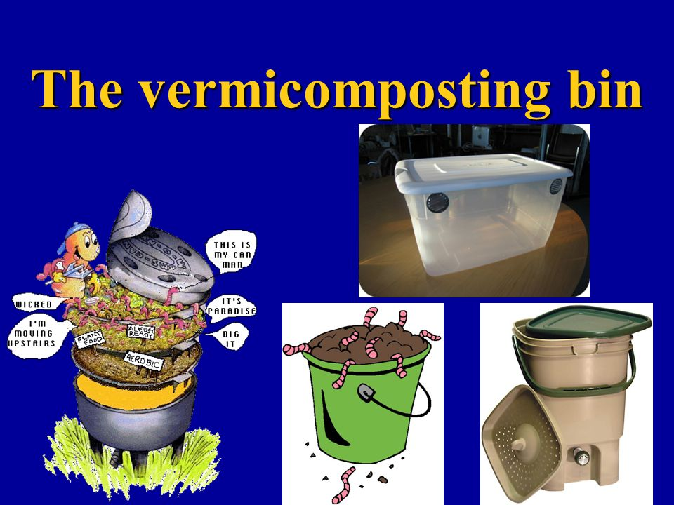 The vermicomposting bin
