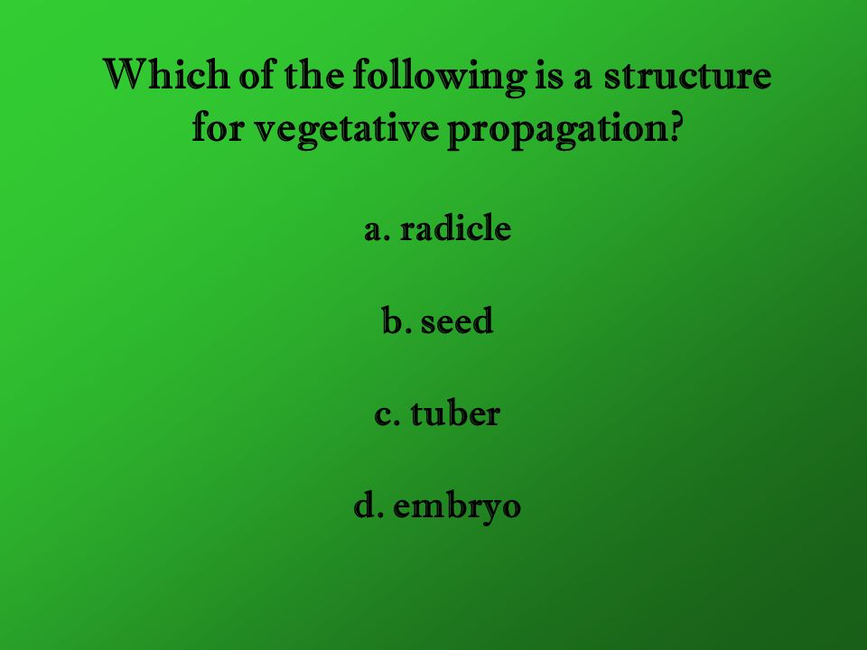 Which of the following is a structure for vegetative propagation