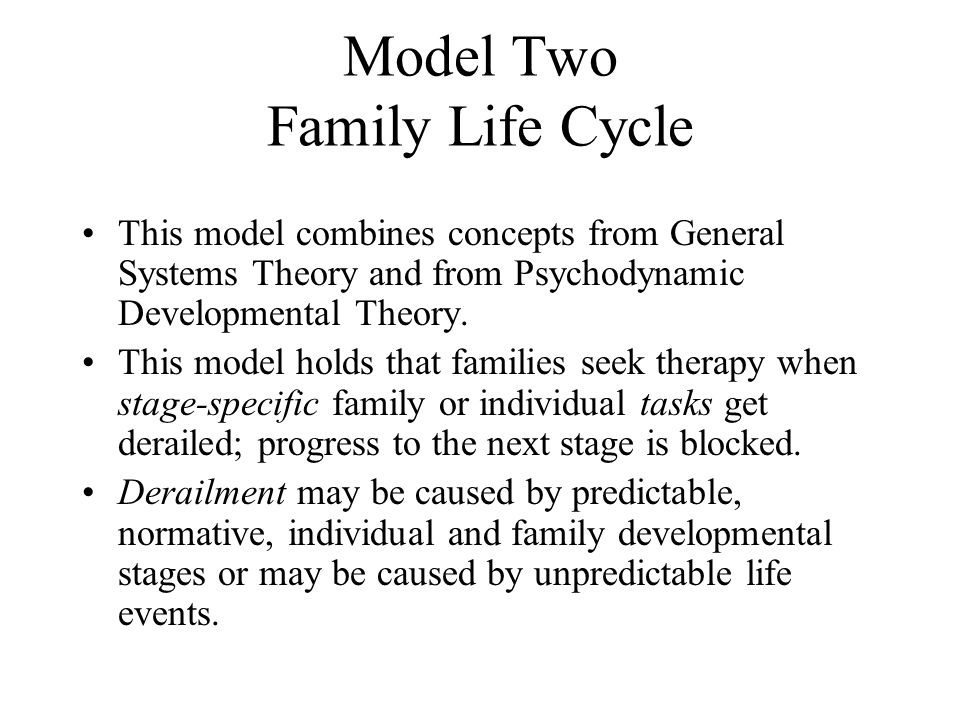 Model Two Family Life Cycle