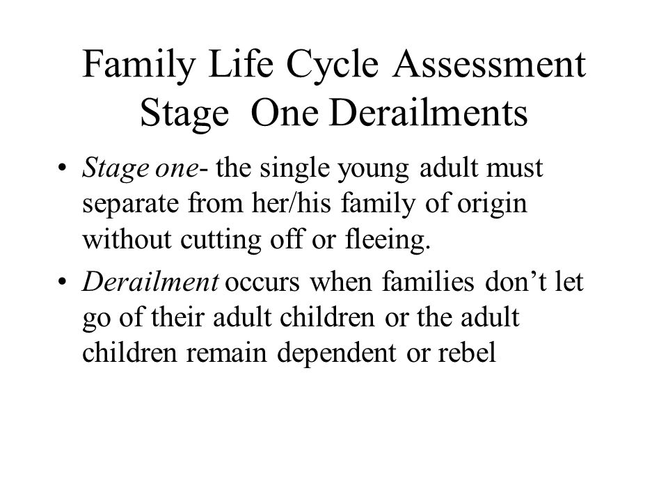 Family Life Cycle Assessment Stage One Derailments