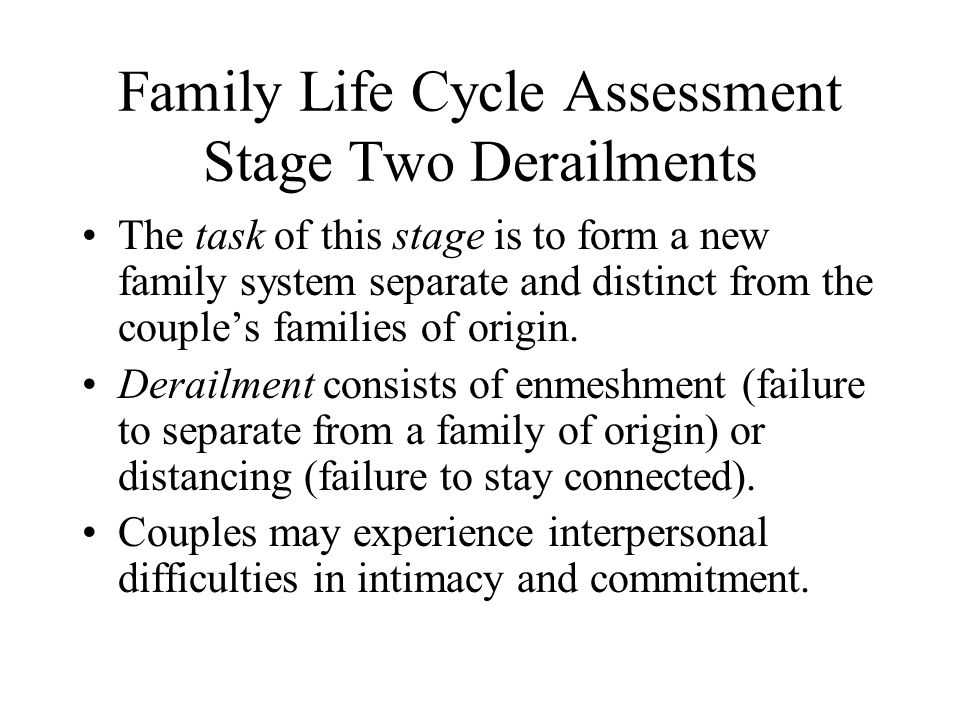 Family Life Cycle Assessment Stage Two Derailments