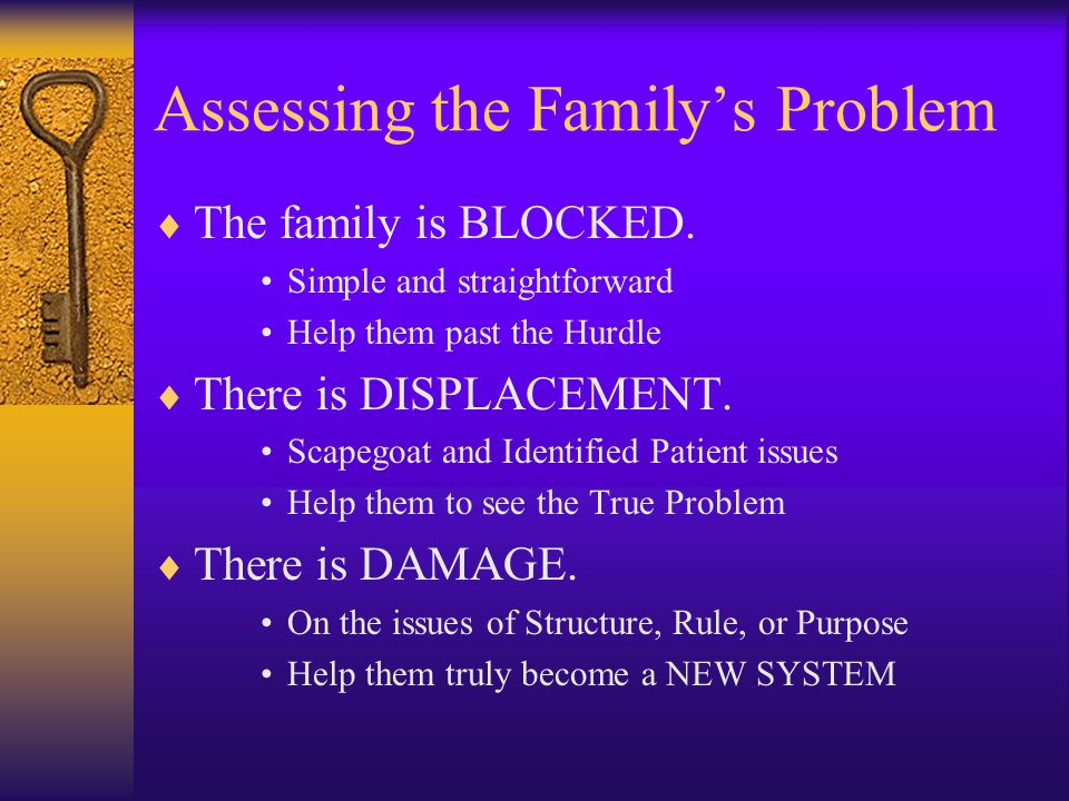 Assessing the Family's Problem