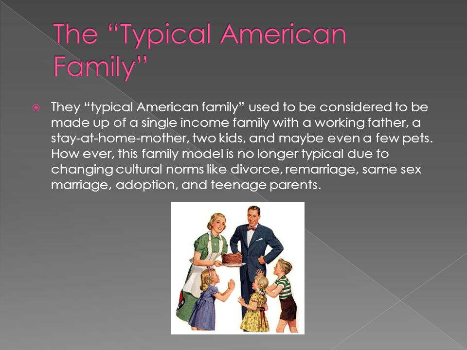 The Typical American Family