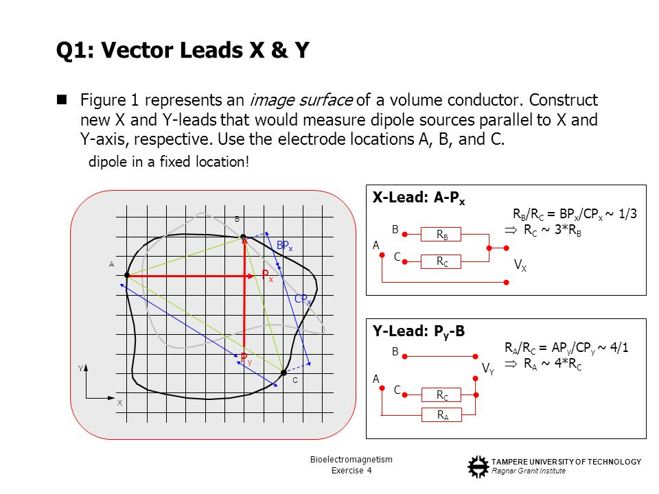 Q1: Vector Leads X & Y