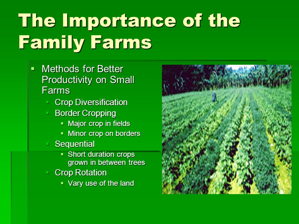 The Importance of the Family Farms