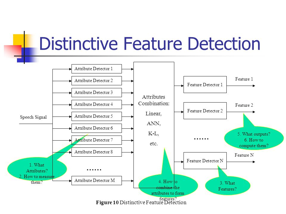 Distinctive Feature Detection