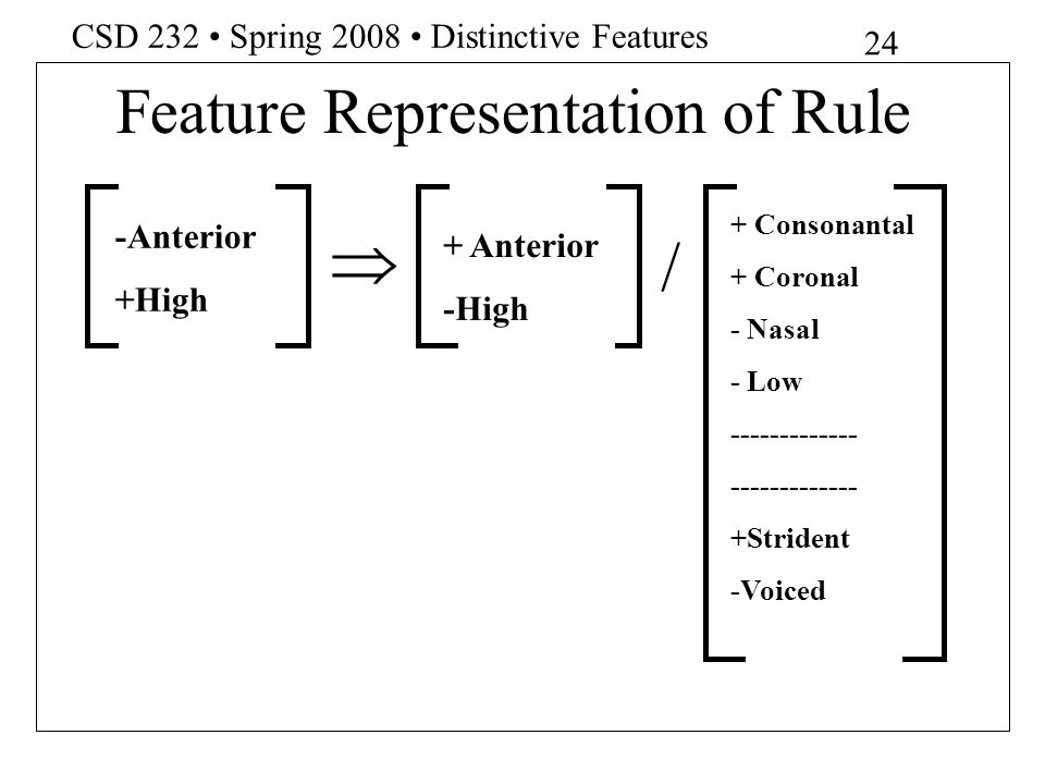 Feature Representation of Rule