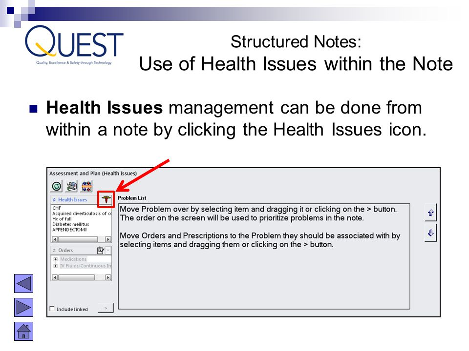 Use of Health Issues within the Note