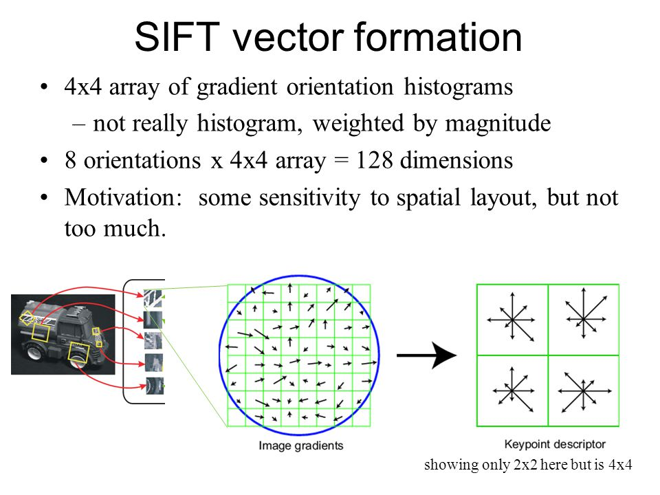 SIFT vector formation 4x4 array of gradient orientation histograms