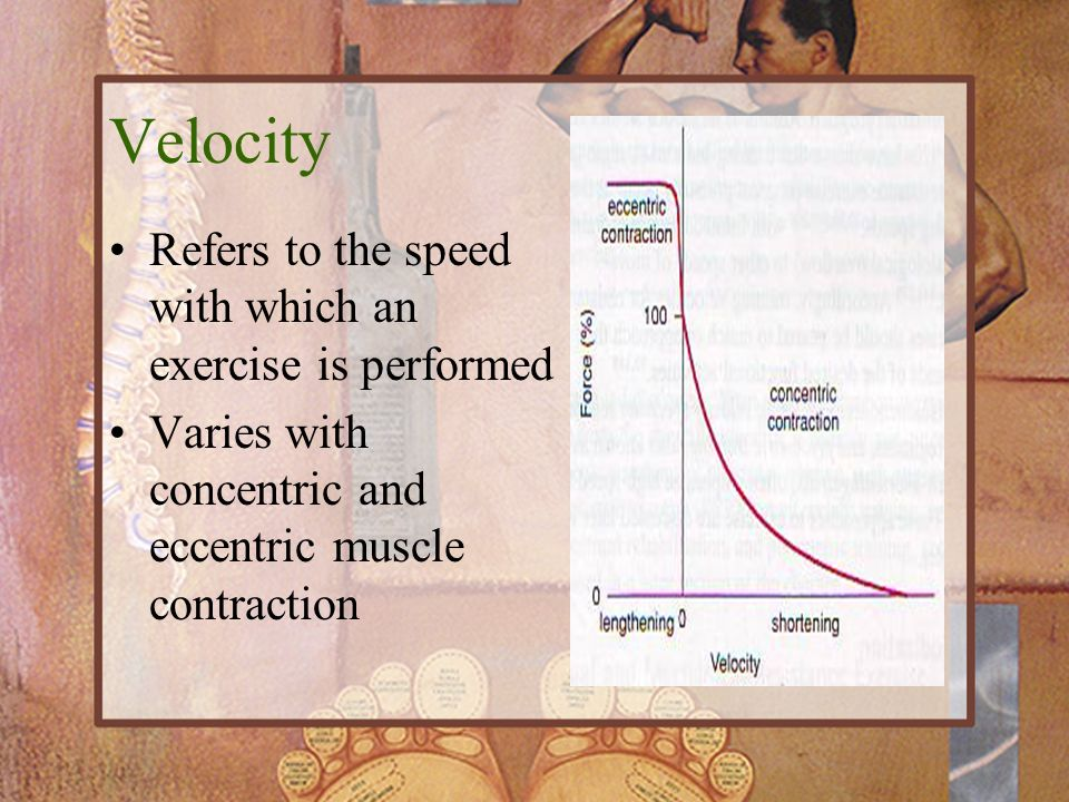 Velocity Refers to the speed with which an exercise is performed