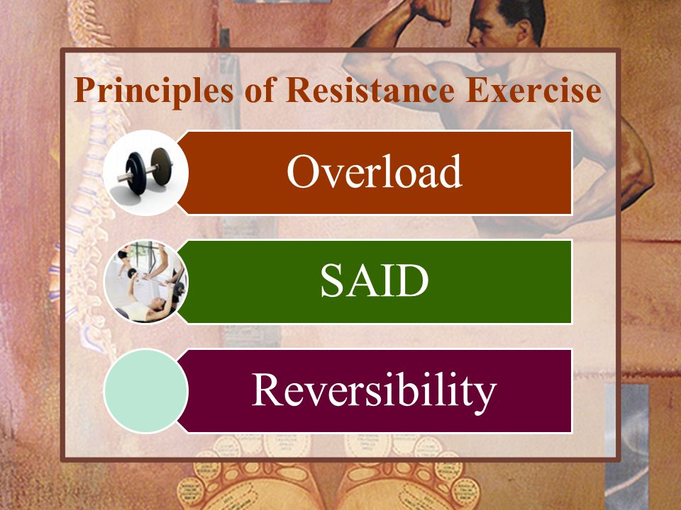 Principles of Resistance Exercise