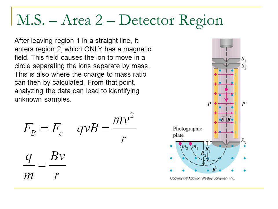 M.S. – Area 2 – Detector Region