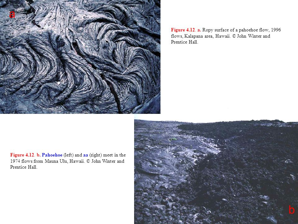 a Figure 4.12. a. Ropy surface of a pahoehoe flow, 1996 flows, Kalapana area, Hawaii. © John Winter and Prentice Hall.