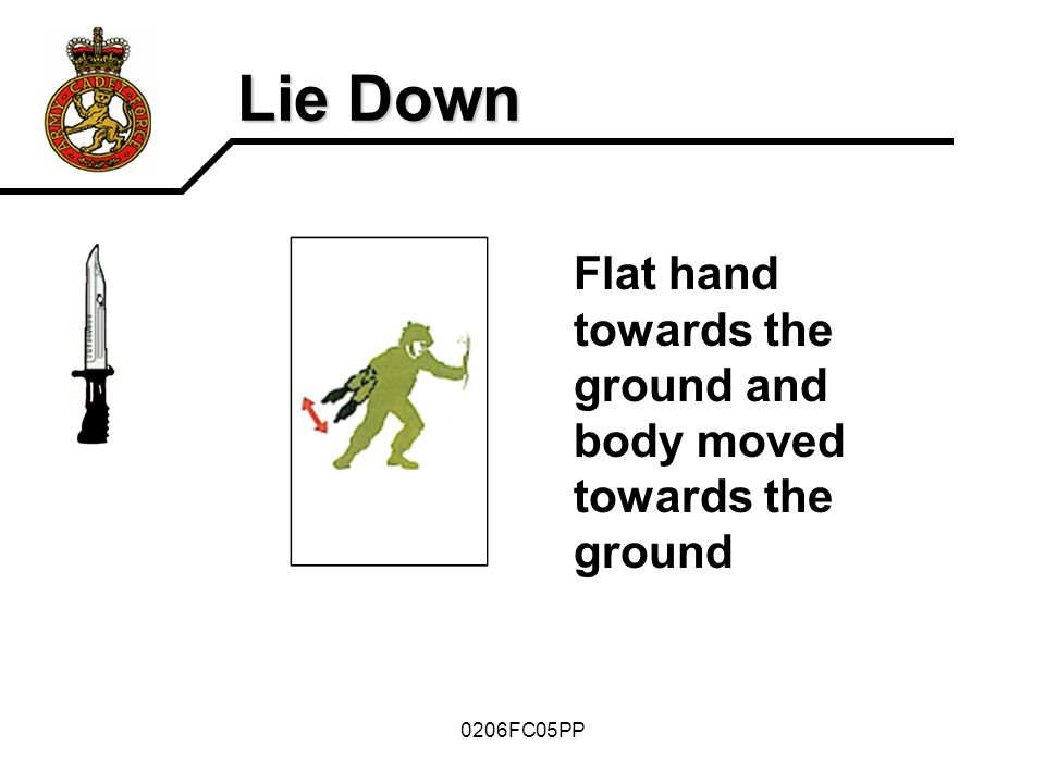 Lie Down Flat hand towards the ground and body moved towards the ground 0206FC05PP