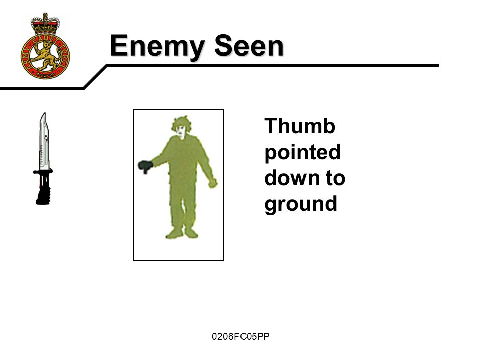 Enemy Seen Thumb pointed down to ground 0206FC05PP