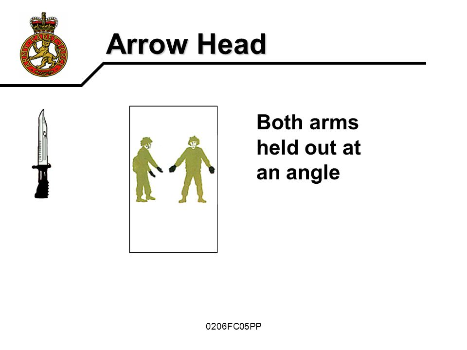 Arrow Head Both arms held out at an angle 0206FC05PP