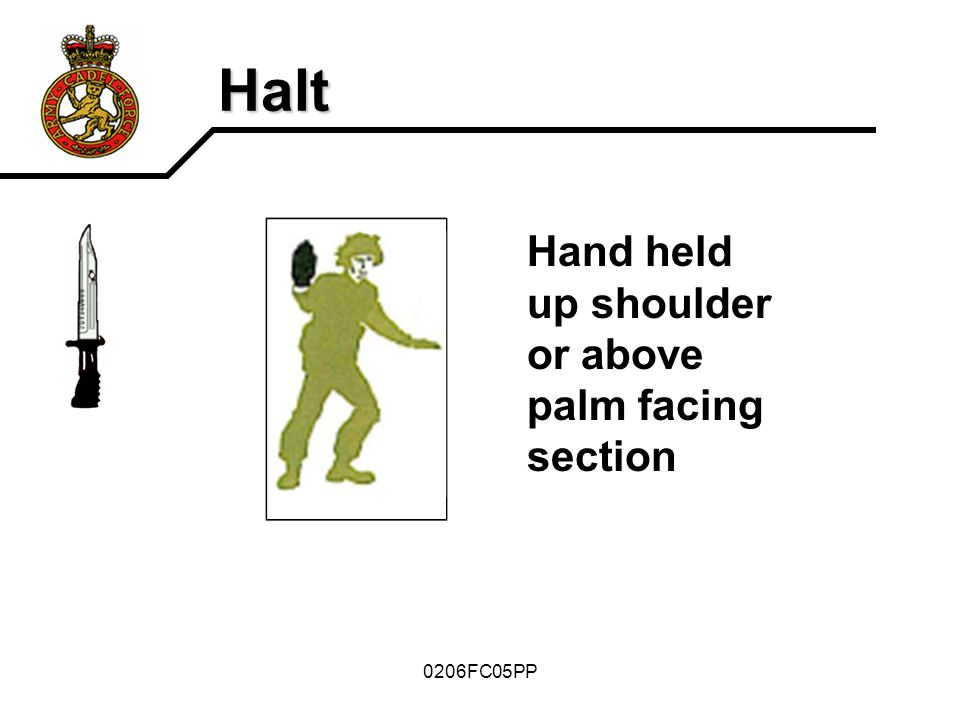 Halt Hand held up shoulder or above palm facing section 0206FC05PP