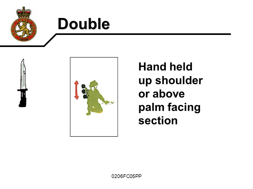 Double Hand held up shoulder or above palm facing section 0206FC05PP