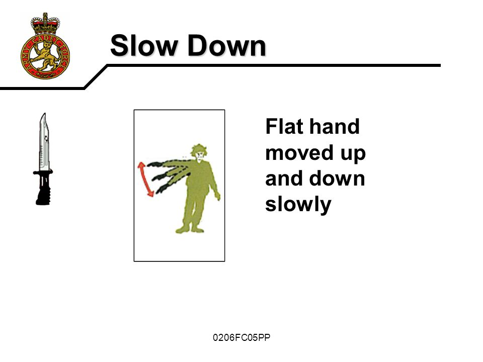 Slow Down Flat hand moved up and down slowly 0206FC05PP