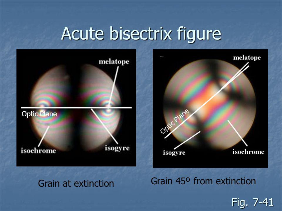 Acute bisectrix figure