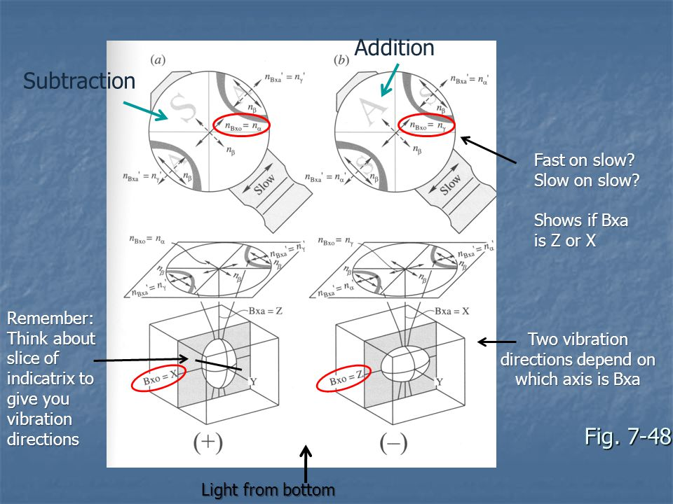 Two vibration directions depend on which axis is Bxa