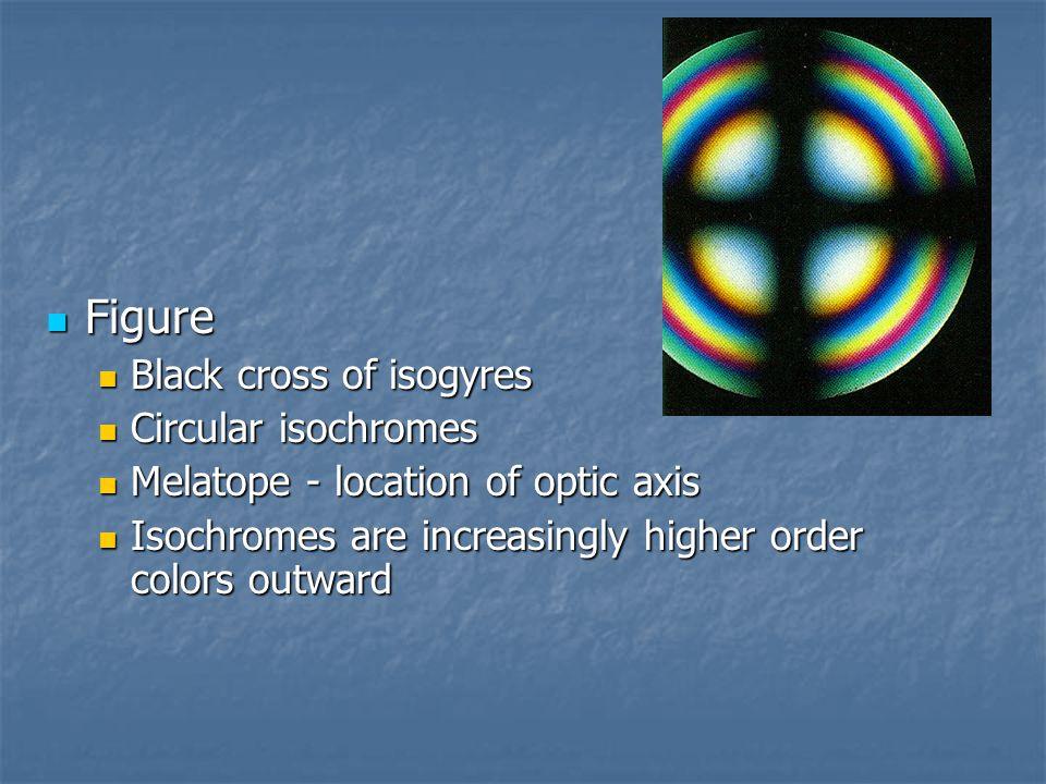 Figure Black cross of isogyres Circular isochromes