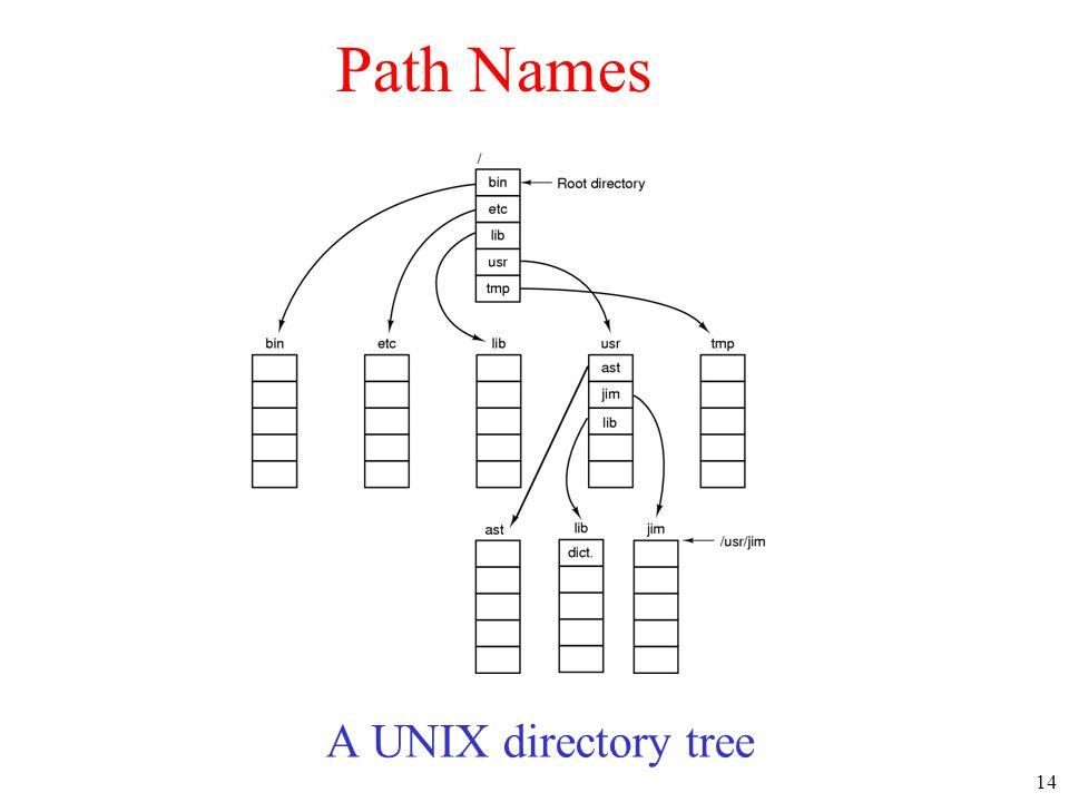 Path Names A UNIX directory tree