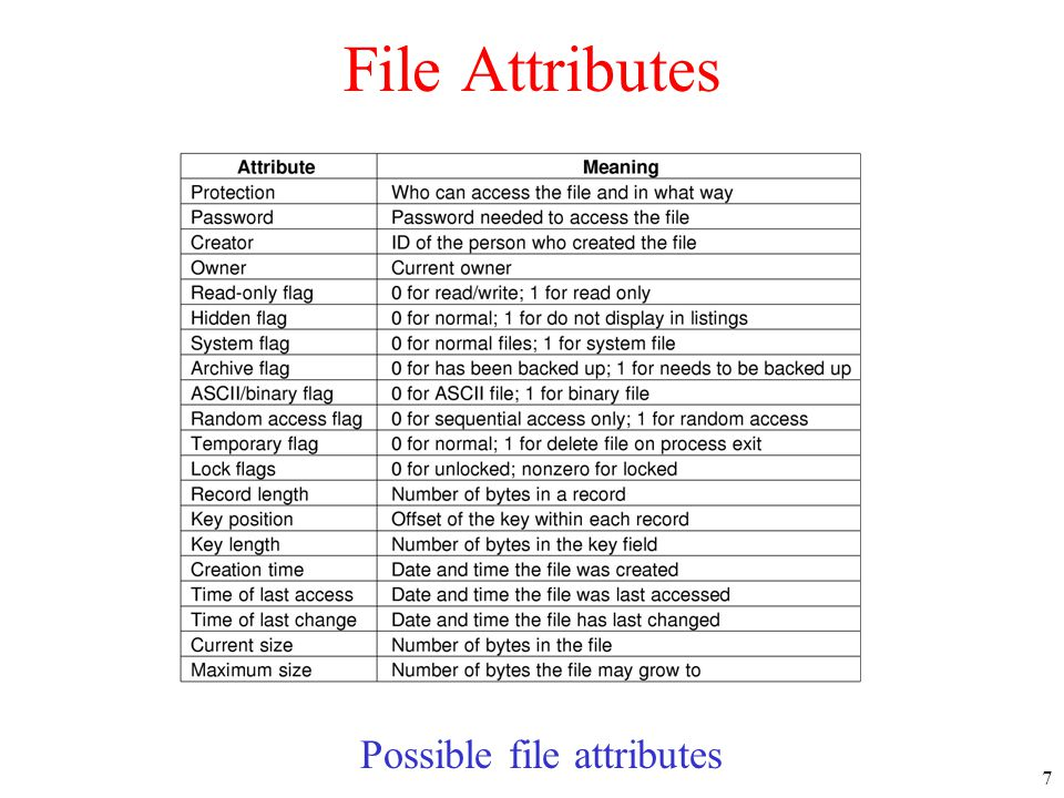 Possible file attributes