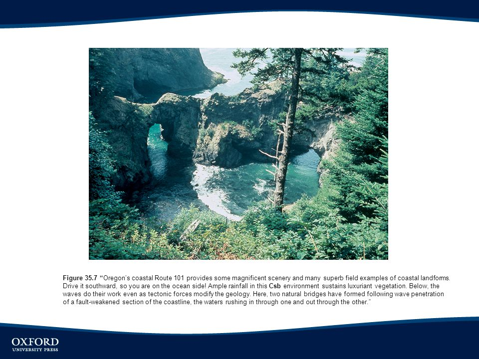 Figure 35.7 Oregon's coastal Route 101 provides some magnificent scenery and many superb field examples of coastal landforms.