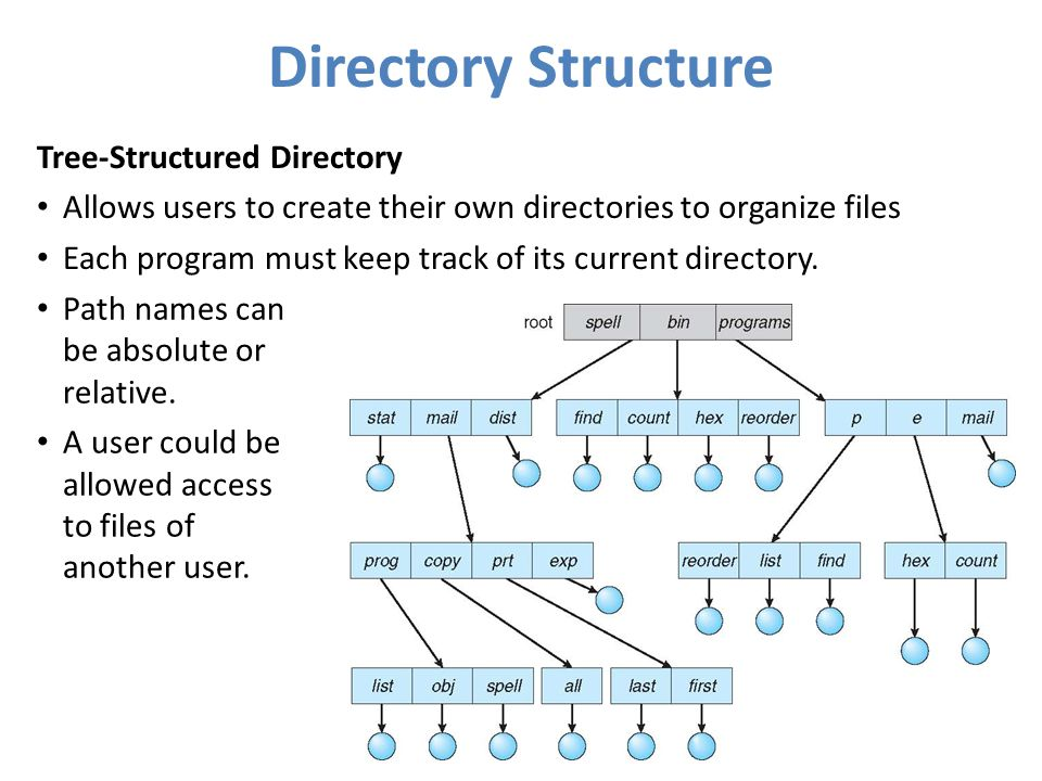 Directory Structure Tree-Structured Directory