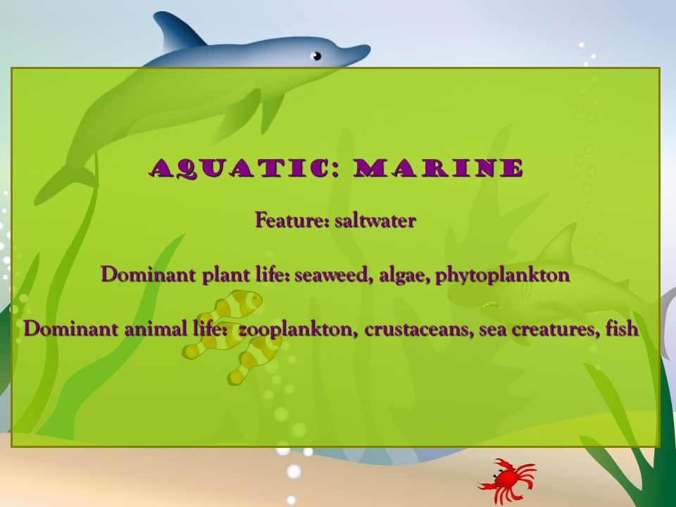 Dominant plant life: seaweed, algae, phytoplankton