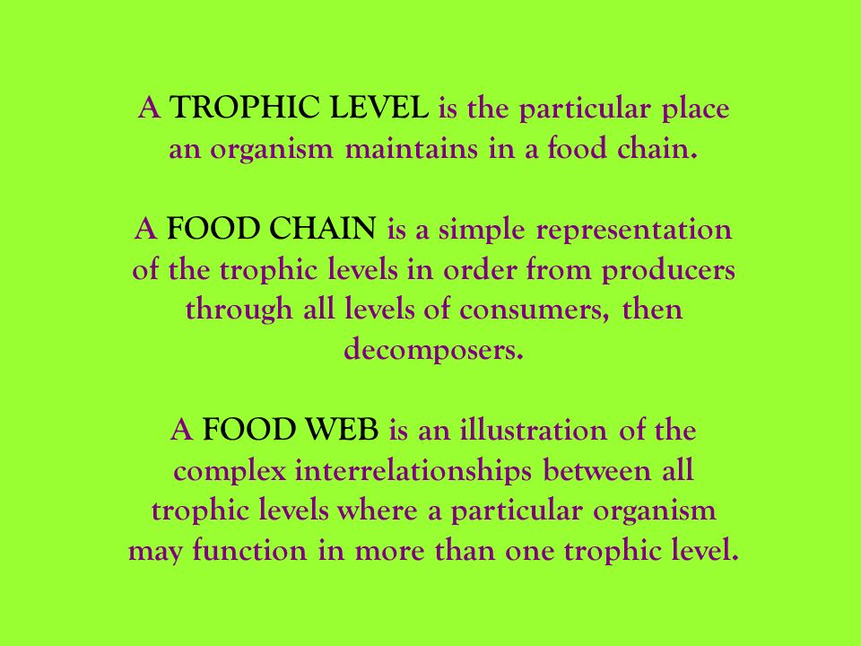 A TROPHIC LEVEL is the particular place an organism maintains in a food chain.