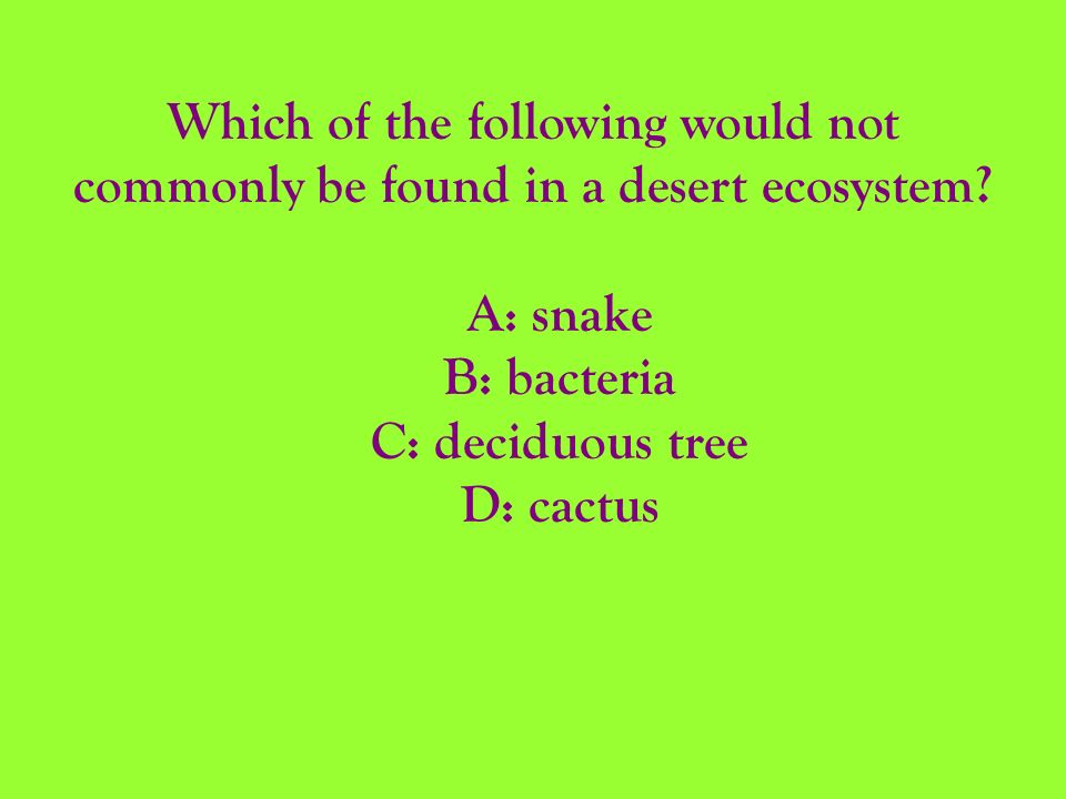 Which of the following would not commonly be found in a desert ecosystem