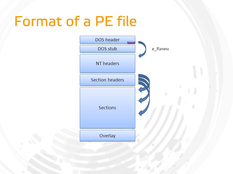 Format of a PE file DOS header DOS stub NT headers Section headers