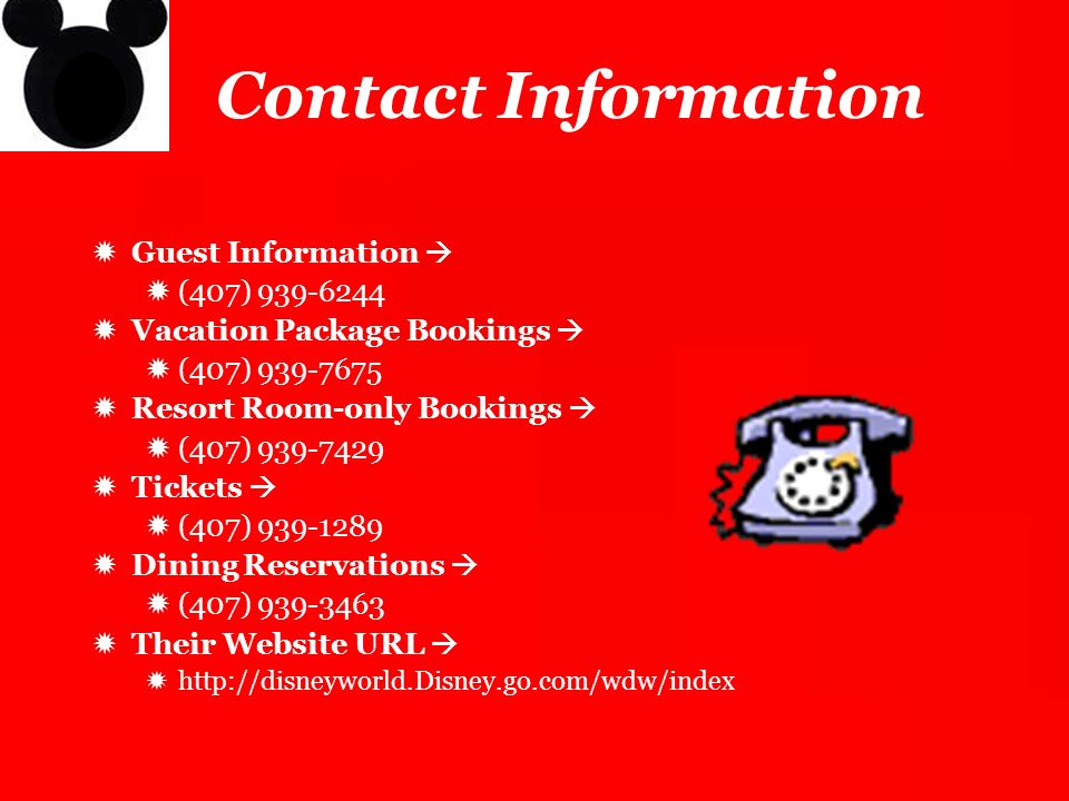 Contact Information Guest Information  (407) 939-6244. Vacation Package Bookings  (407) 939-7675.