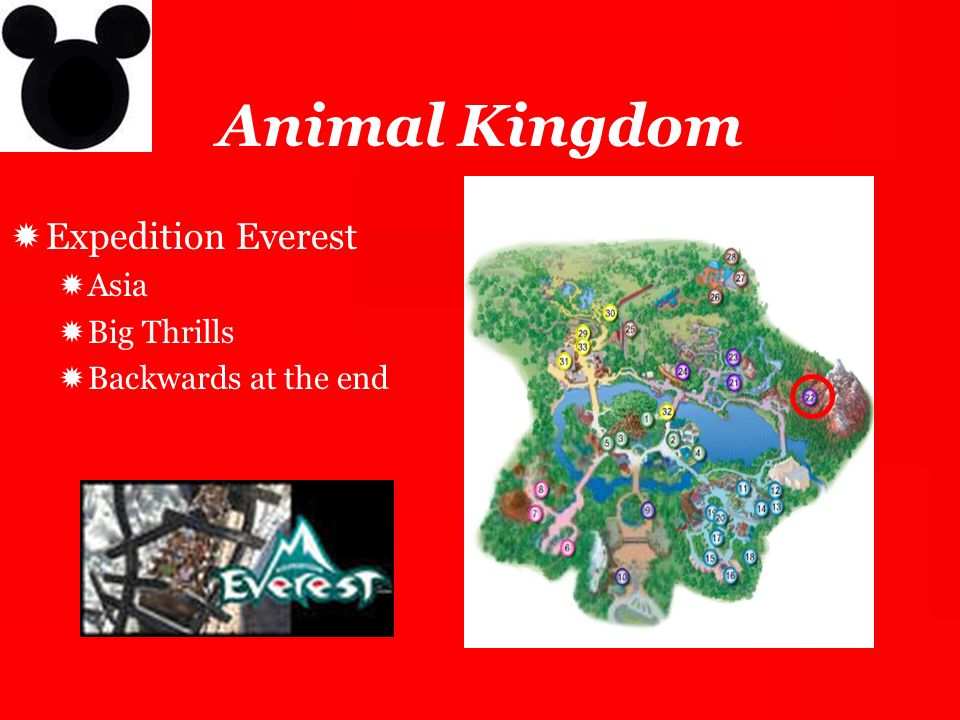 Animal Kingdom Expedition Everest Asia Big Thrills