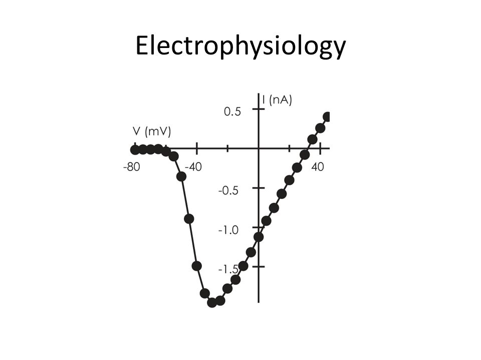 Electrophysiology This is a voltage gated channel's IV plot.