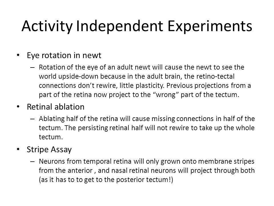 Activity Independent Experiments