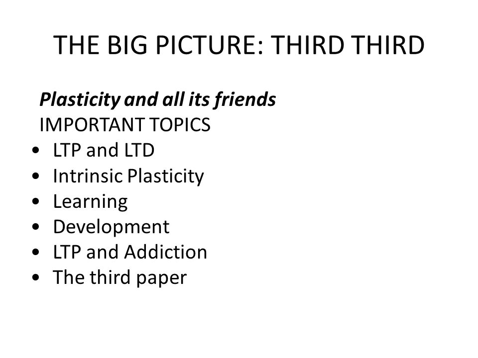 THE BIG PICTURE: THIRD THIRD