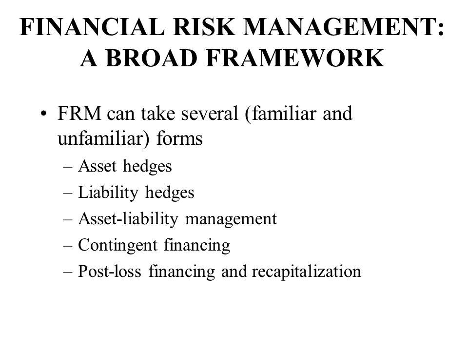 FINANCIAL RISK MANAGEMENT: A BROAD FRAMEWORK
