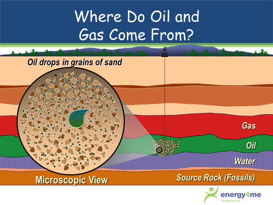Where Do Oil and Gas Come From