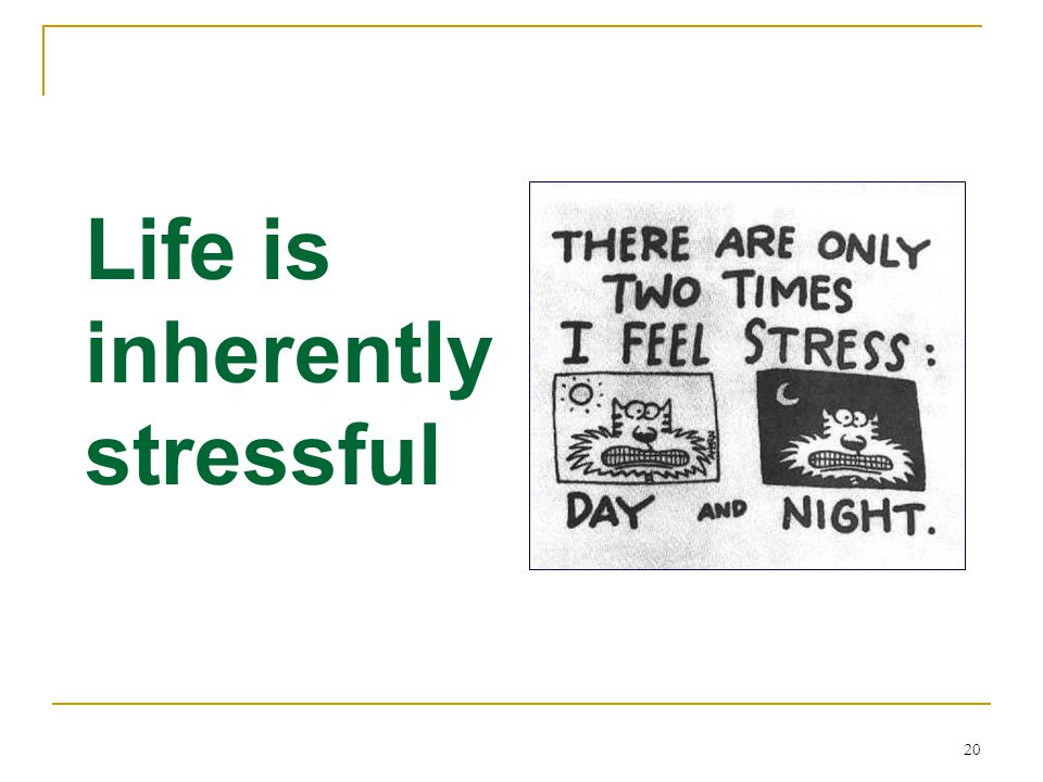 Life is inherently stressful