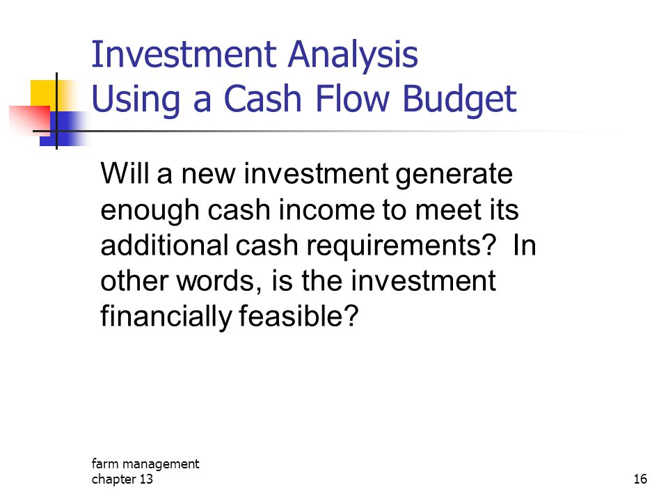 Investment Analysis Using a Cash Flow Budget