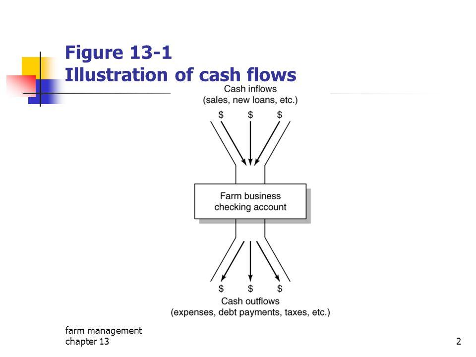 Figure 13-1 Illustration of cash flows