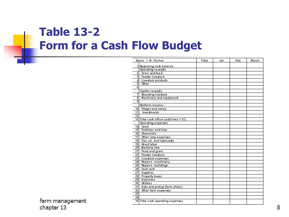 Table 13-2 Form for a Cash Flow Budget