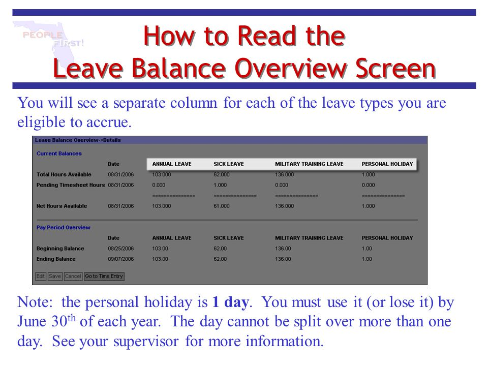 How to Read the Leave Balance Overview Screen