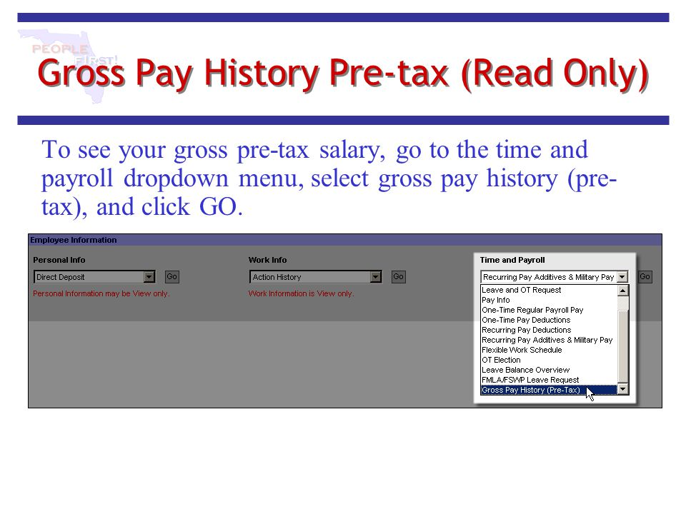 Gross Pay History Pre-tax (Read Only)