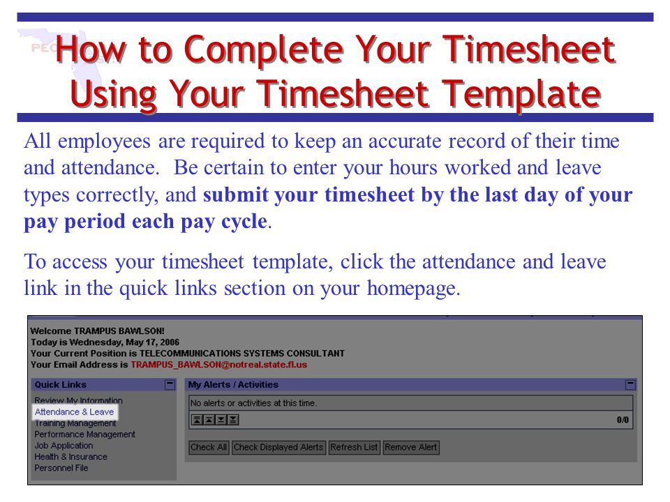 How to Complete Your Timesheet Using Your Timesheet Template