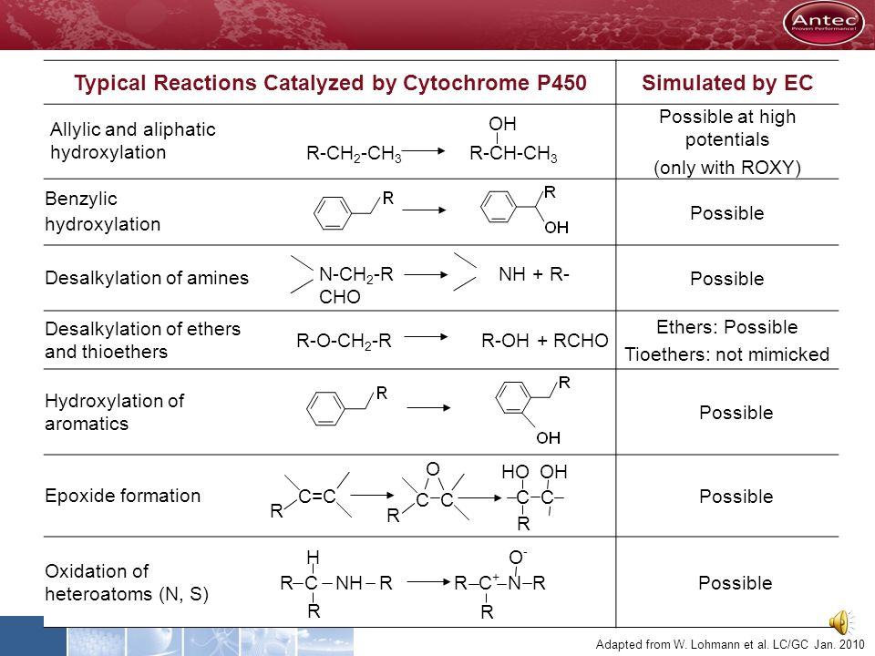 Typical Reactions Catalyzed by Cytochrome P450